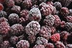 Boysenberry IQF 1kg Frozen SB