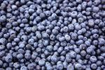 Blueberry IQF 1kg Frozen SB