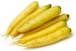 Carrot Yellow Jumbo