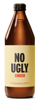 Drink Wellness Tonic Ginger 250ml NO UGLY